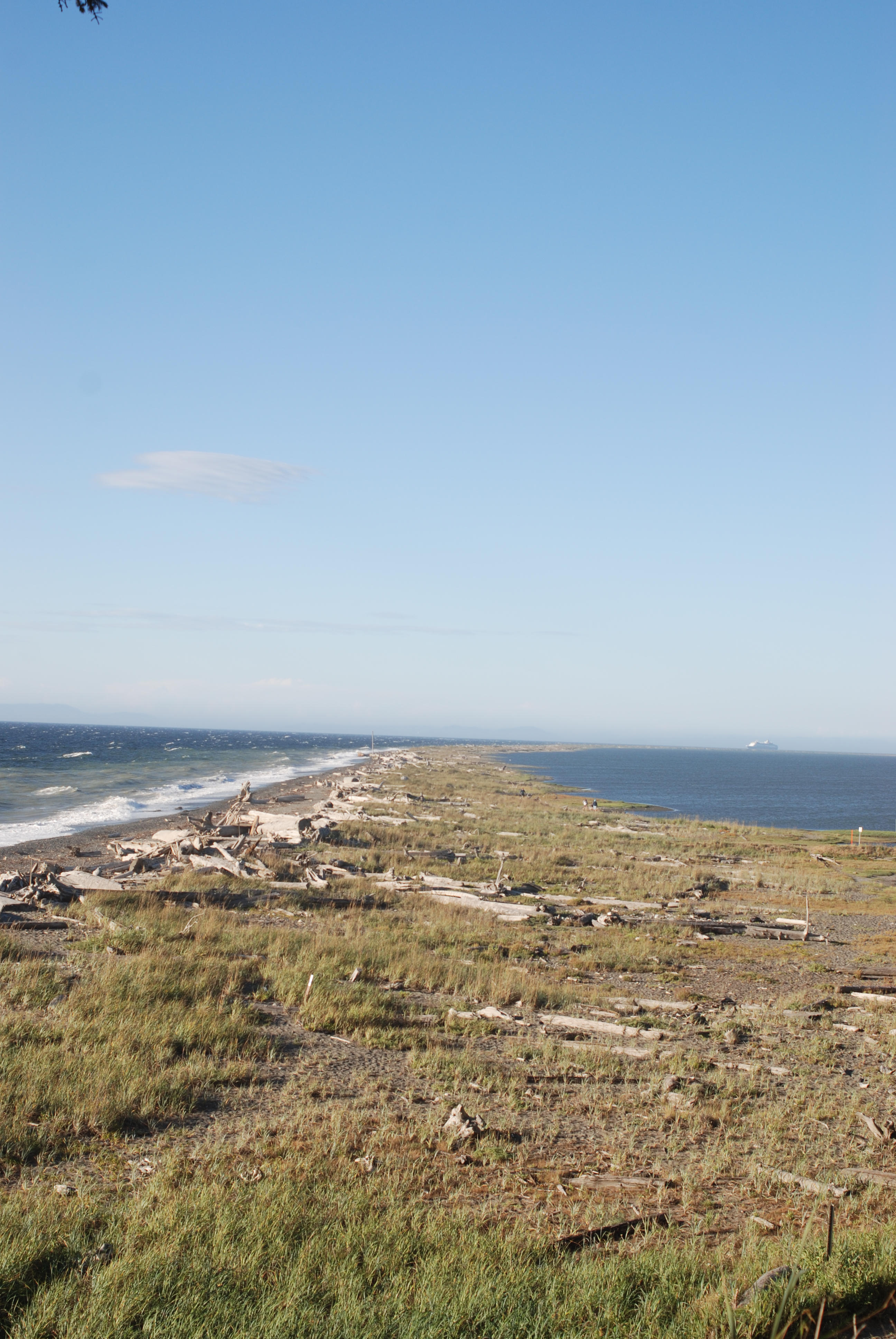 the Dungeness spit